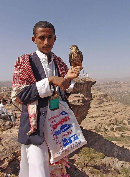 Ребята с соколами / Фото из Йемена