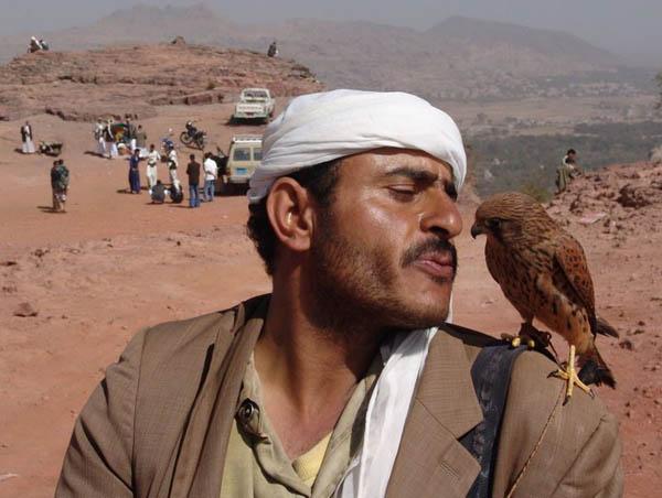 Сокольчий / Фото из Йемена