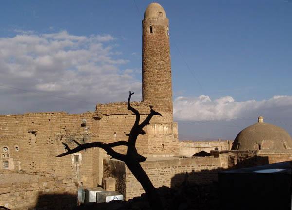 Фила? Тхила? Тула? / Фото из Йемена