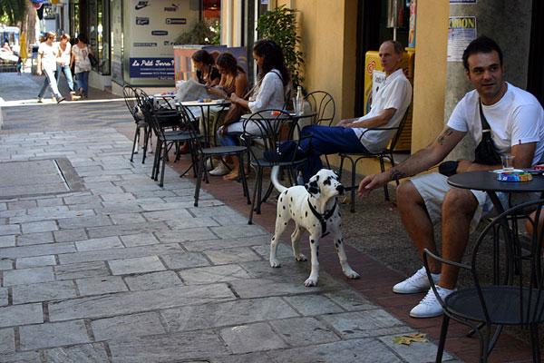 Уличные кафе в Аяччо / Фото из Франции