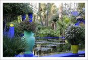 Марокко, Марракеш. Сад Мажорель / Марокко