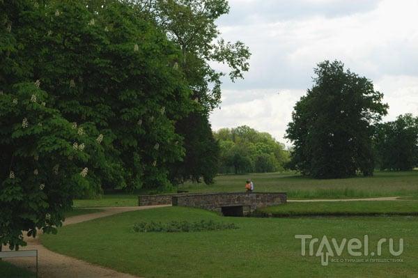Приусадебный парк / Фото из Германии
