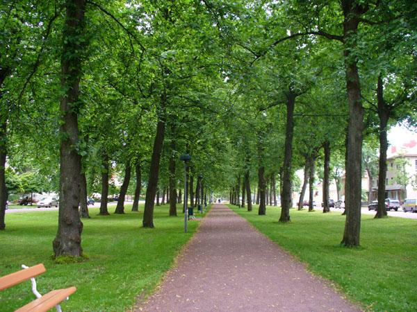 Эспланада в центре города / Фото из Финляндии