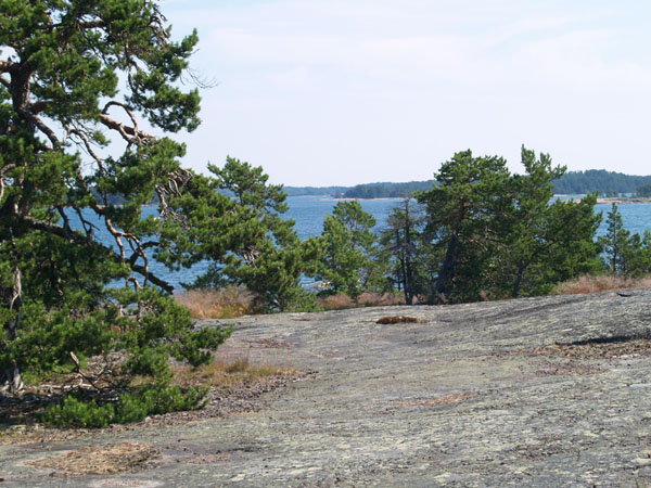 На берегу острова Вордё / Фото из Финляндии