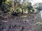 арабское кладбище / Сингапур