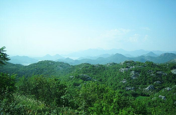 Скадарское озеро / Фото из Черногории