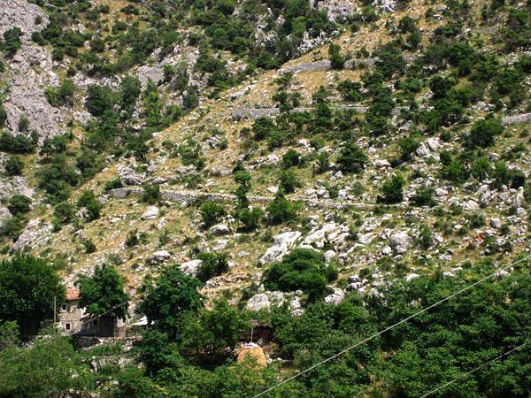 Вид с горы / Фото из Черногории