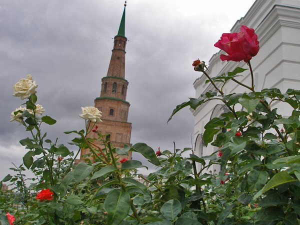 Угол отклонения башни - около двух метров / Фото из России