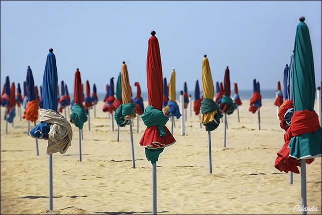 Утренний пляж / Фото из Франции