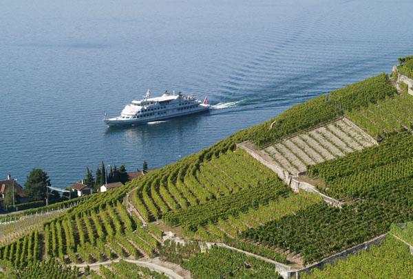 Типичный вид Женевского озера: виноградники и кораблик / Фото из Швейцарии