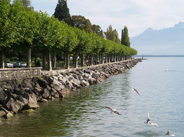 Набережная в сторону Монтре / Фото из Швейцарии