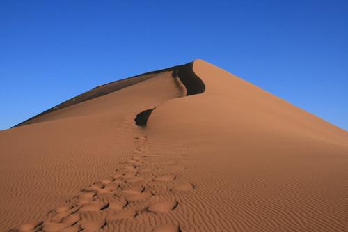 Следы на песке / Намибия