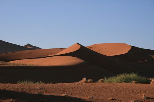 Самые сильные тени появляются в пустыне на закате / Намибия