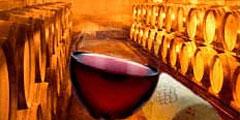 Фестиваль вина пройдет в Болонье