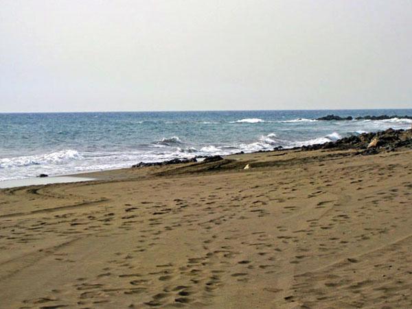 Прогулка вдоль берега / Фото из Испании