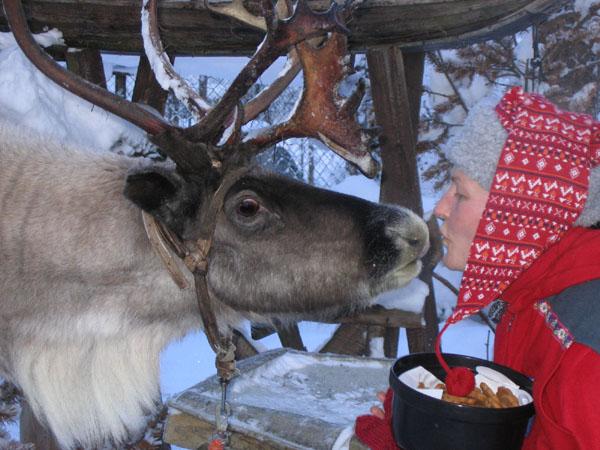 Поцелуй поцелуем, но и печеньку хочется / Фото из Финляндии