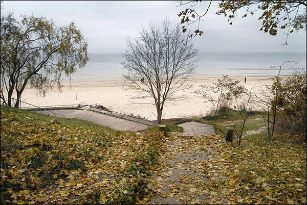 По дороге к морю / Фото из Латвии