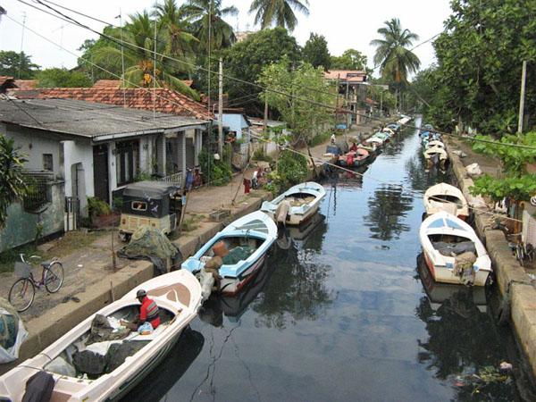 'Улица' в Негомбо / Фото со Шри-Ланки