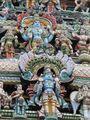 Из Шри-Ланки в Индию / Индия