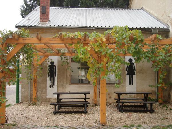 Пергола своими руками для винограда