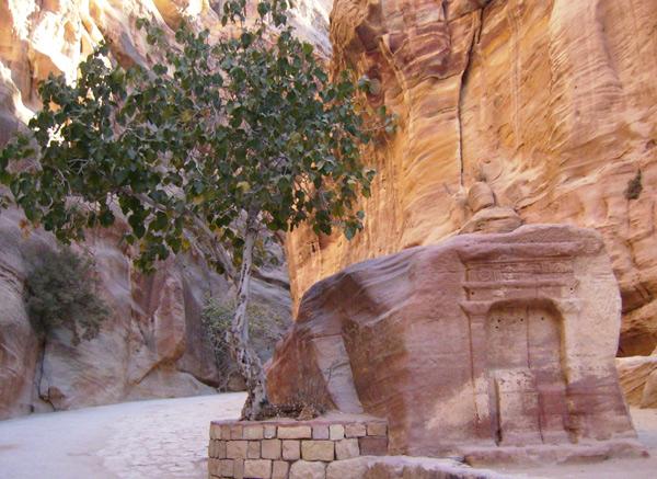 Начало пути к Петре / Фото из Иордании