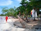 Деревянное исскуство на пляже / Ямайка