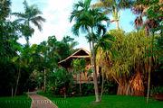 Наш домик на территории отеля 'Sunset at the palms' / Ямайка