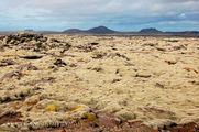 Лавовое поле / Исландия
