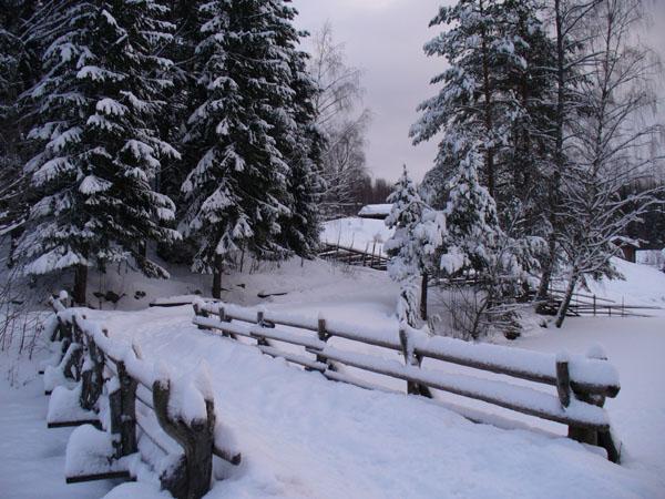 Здесь слышно, как падает снег... / Фото из Норвегии