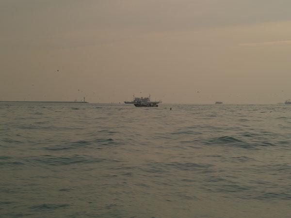 Босфор впадает в Мраморное море / Фото из Турции