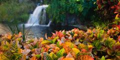 Энциклопедия водопадов издана в
