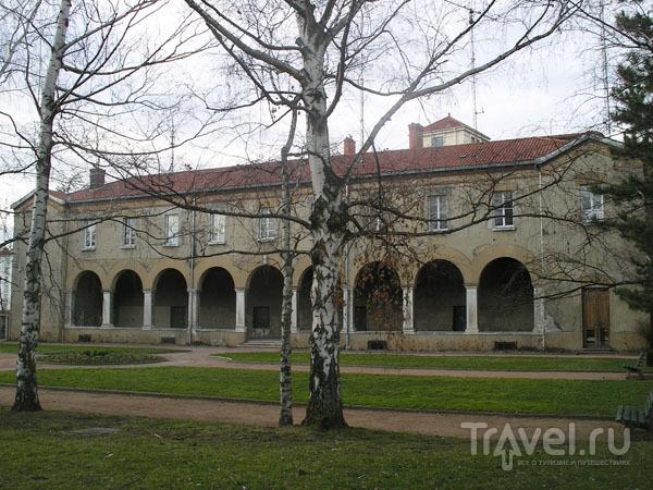 Неизвестное аббатство с березками и елочками / Фото из Франции