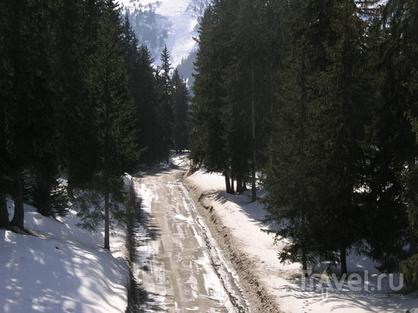 Горная дорога / Фото из Франции