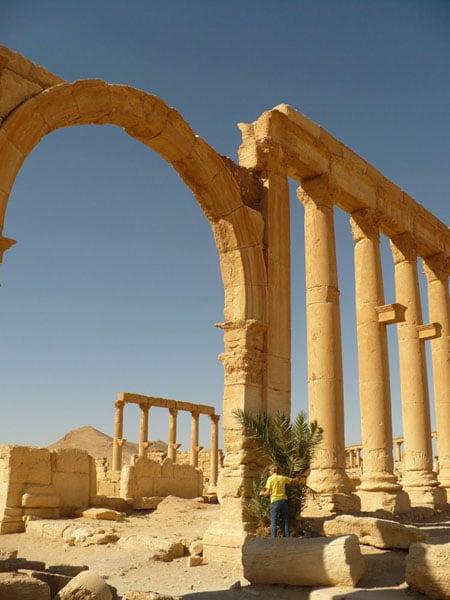 Панорама Пальмиры / Фото из Сирии