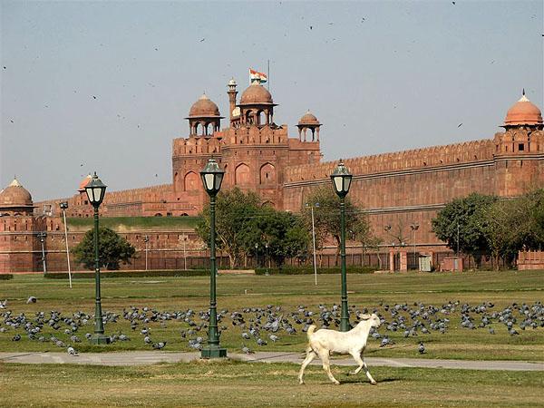 Достопримечательности Дели / Фото из Индии