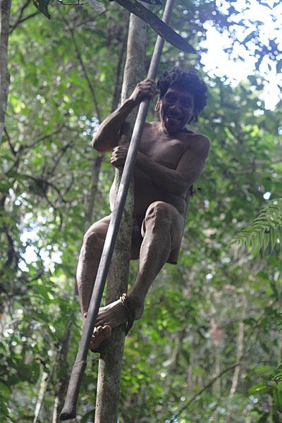 """Манани лезет на дерево, дабы показать стрельбу из """"ружья"""" / Фото из Эквадора"""