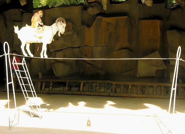 """Козел-канатоходец - звезда шоу на """"Острове обезьян"""" / Фото из Китая"""