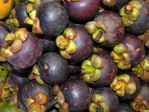Мангустин и другие фрукты заменяют на Хайнане калорийные десерты / Фото из Китая