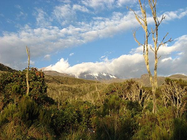 Килиманджаро за облаками / Фото из Танзании
