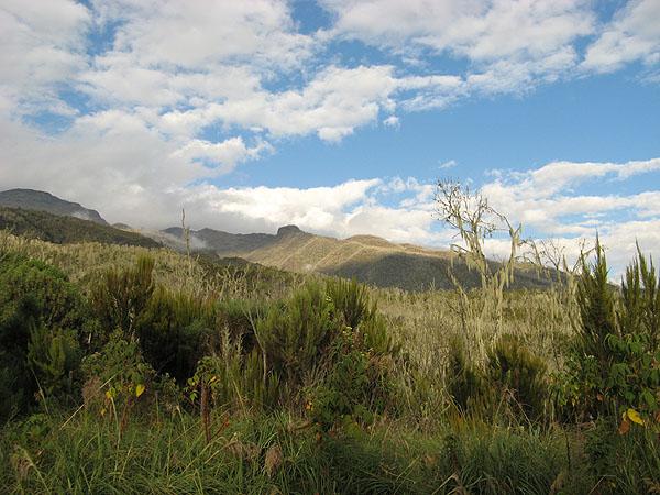 Вдали Килиманджаро - наша цель / Фото из Танзании