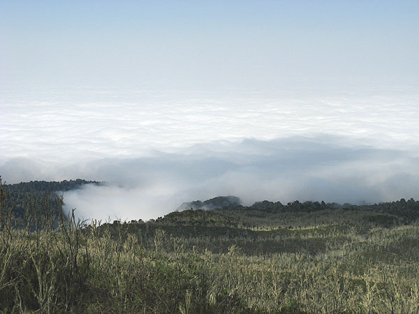 Над облаками... / Фото из Танзании