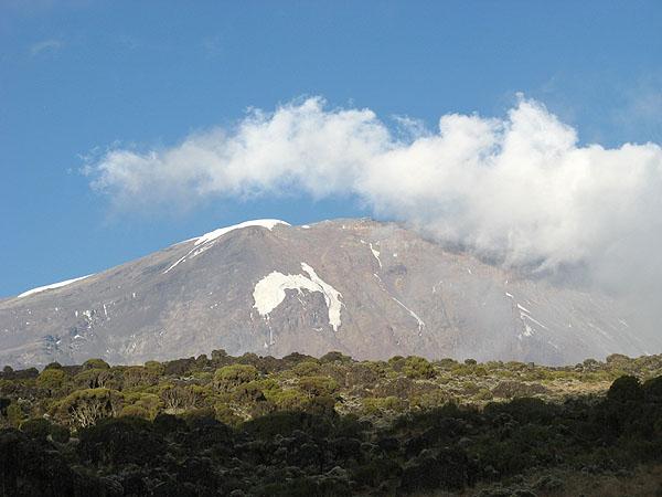 Вершина Килиманджаро - еще далеко... / Фото из Танзании