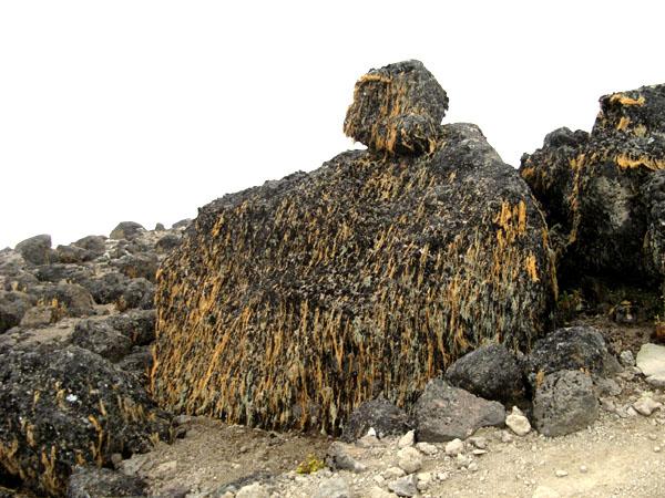 Огромные камни - вот и весь пейзаж / Фото из Танзании
