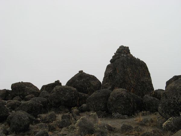 Холодная и серая высокогорная пустыня / Фото из Танзании