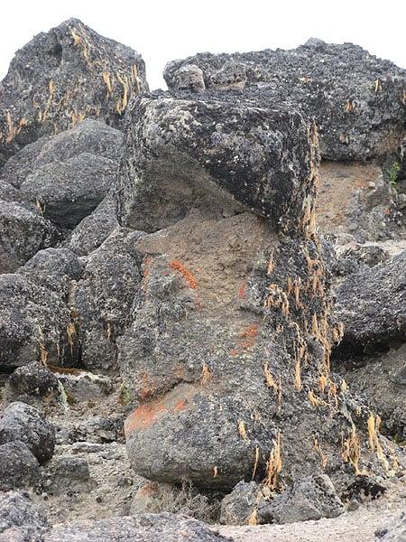 Каменная голова в высокогорной пустыне Килиманджаро / Фото из Танзании