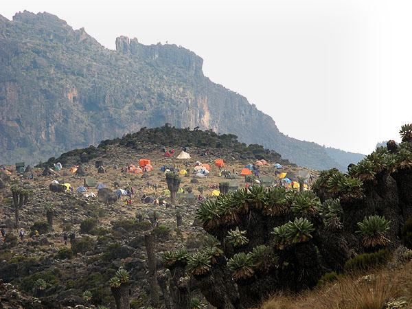 Лагерь на высоте 3900 метров / Фото из Танзании