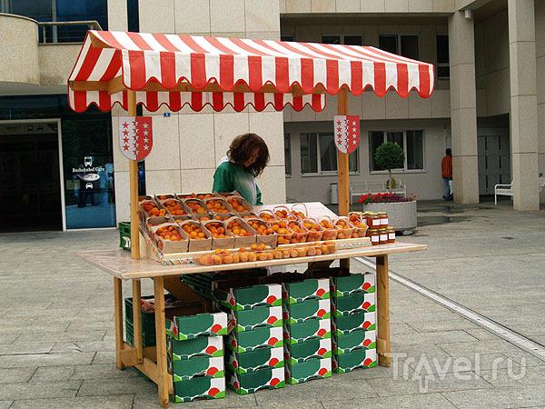 Девочка с абрикосами / Фото из Швейцарии