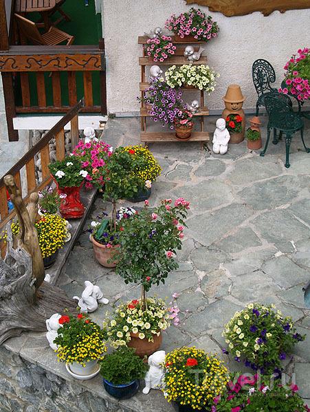 В Лойкербаде цветы повсюду / Фото из Швейцарии
