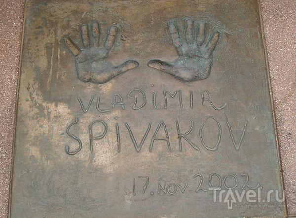 Руки Владимира Спивакова / Фото из Швейцарии