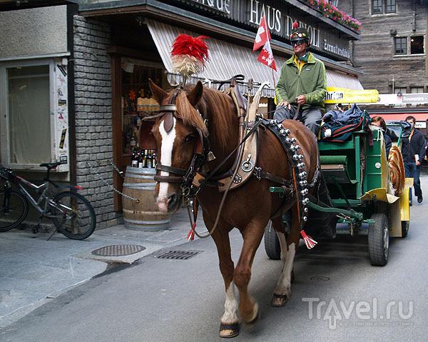 Трансфер на повозке с лошадьми / Фото из Швейцарии